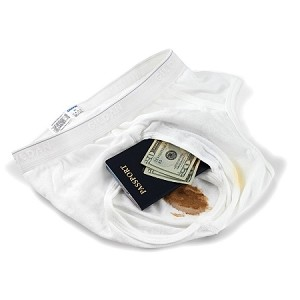 Brief Safe Travel Security Hidden Contents Wallet Passport Protector